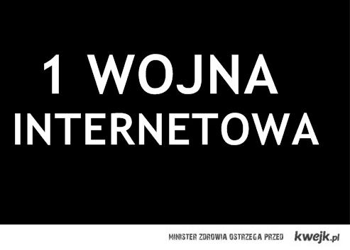 1-a wojna internetowa