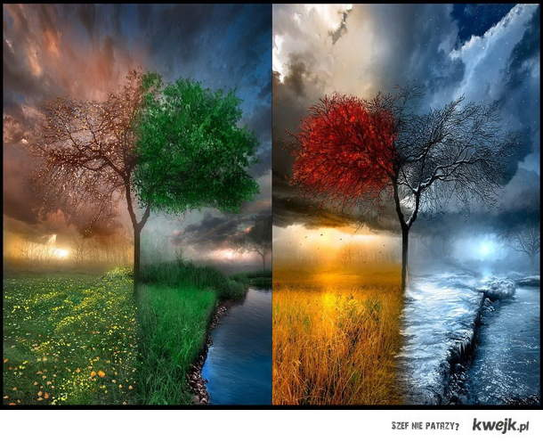 4 pory roku