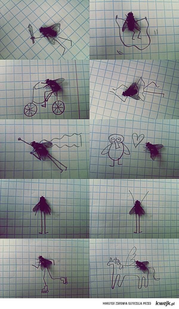 Mała mucha w wielkim świecie.