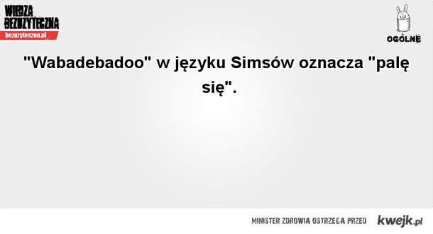 Simsy