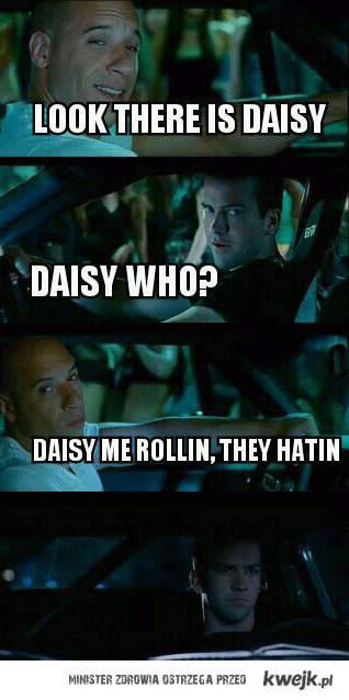 Znasz daisy?
