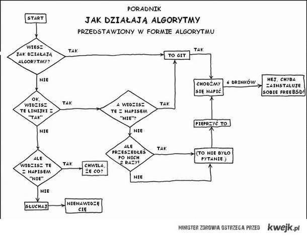 Jak działają algorytmy