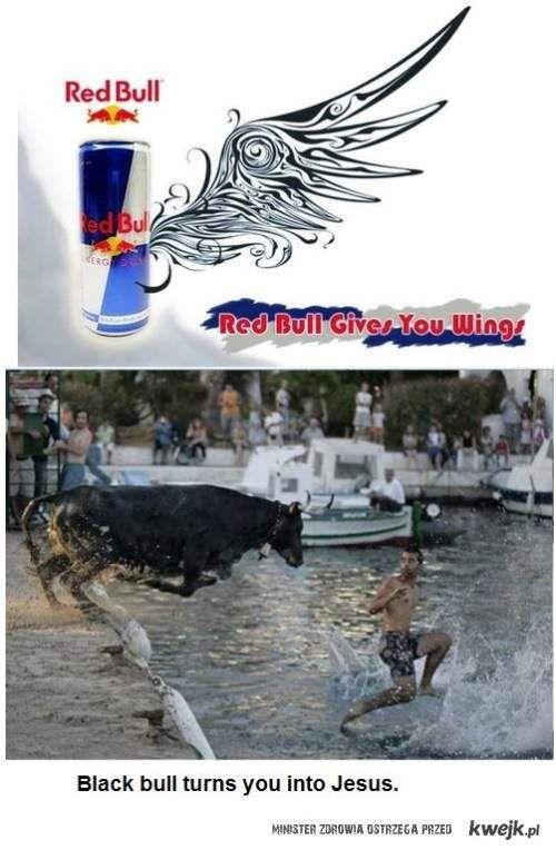 Red Bull - Black Bull