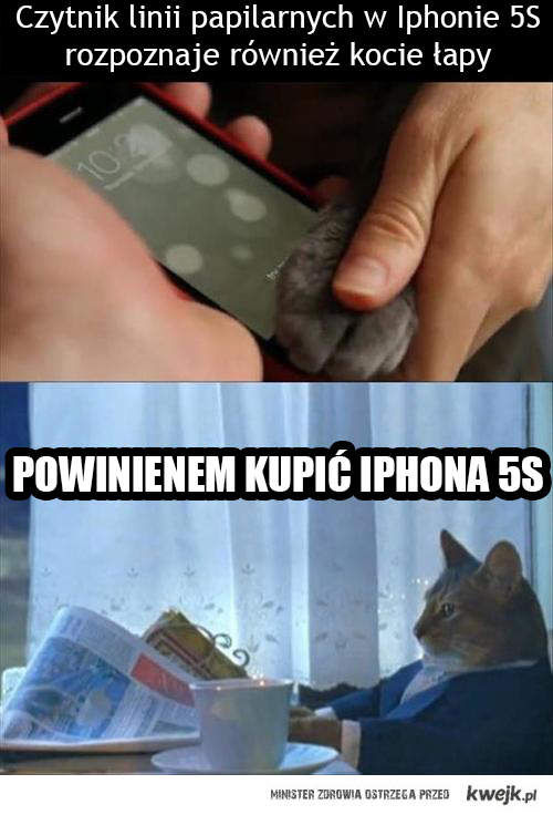 Telefon dla kota