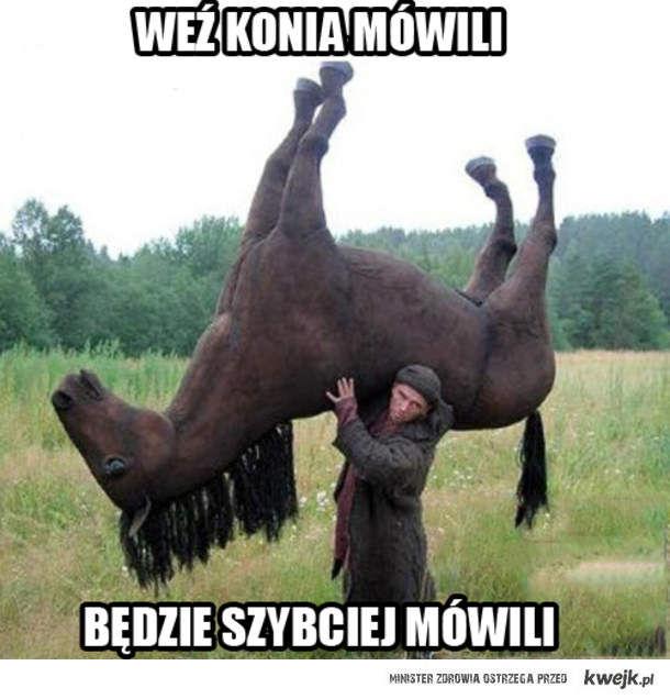Weź konia