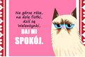 10 kartek Walentynkowych od Grumpy Cat'a