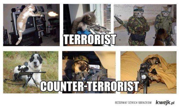 terrorist, counter-terrorist
