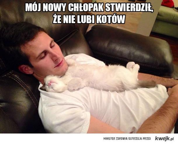 Nie lubię kotów, taa