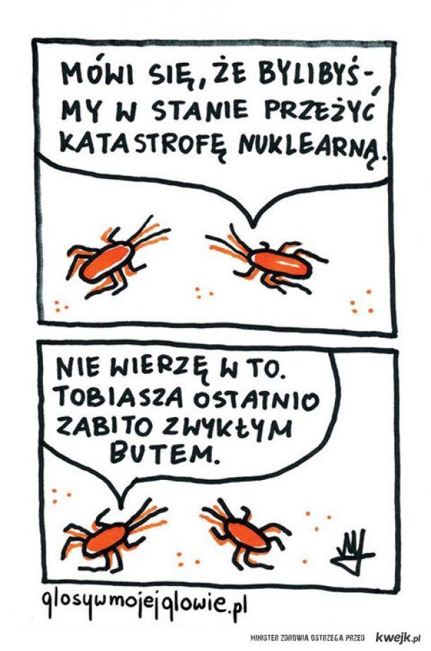 Rozkminy karaluchów
