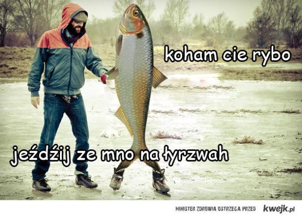 koham cie rybo jeźdźij ze mno na łyrzwah
