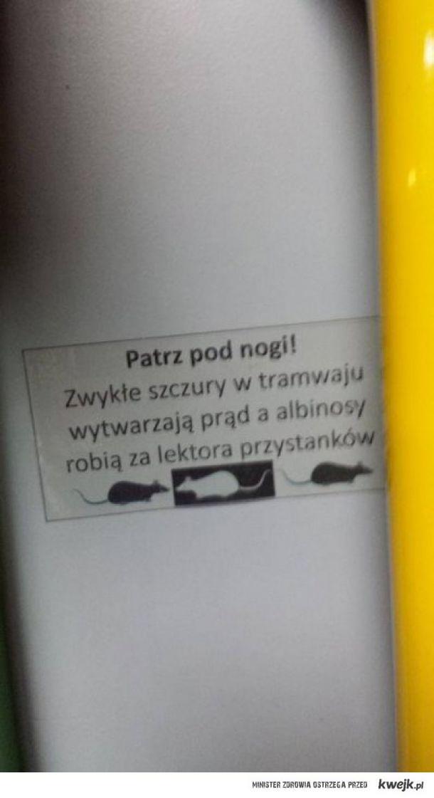 MPK Poznań