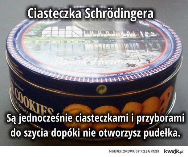 Ciasteczka Schroedingera