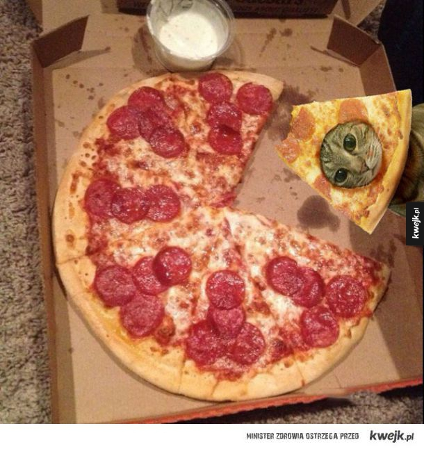 Pizza koteł