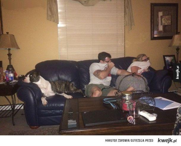 Każdy właściciel psa rozumie