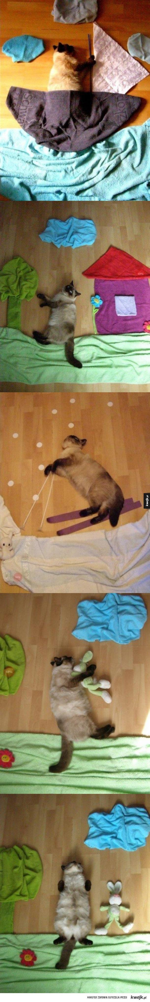 Kot który nie zdaje sobie sprawy, że ma sesję