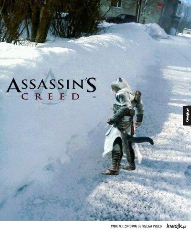 Assassins creed w kociej edycji