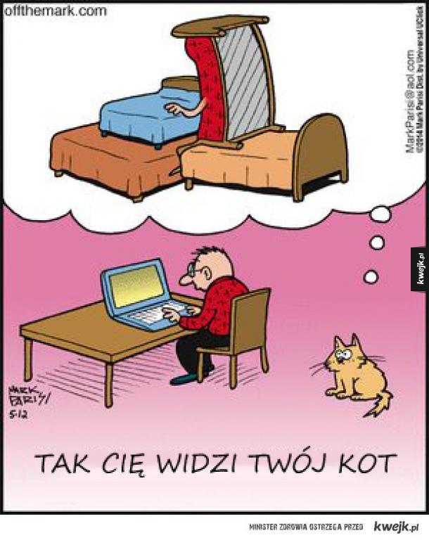 Twój kot