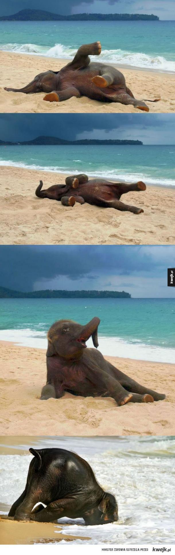 Pierwszy raz zobaczył plażę
