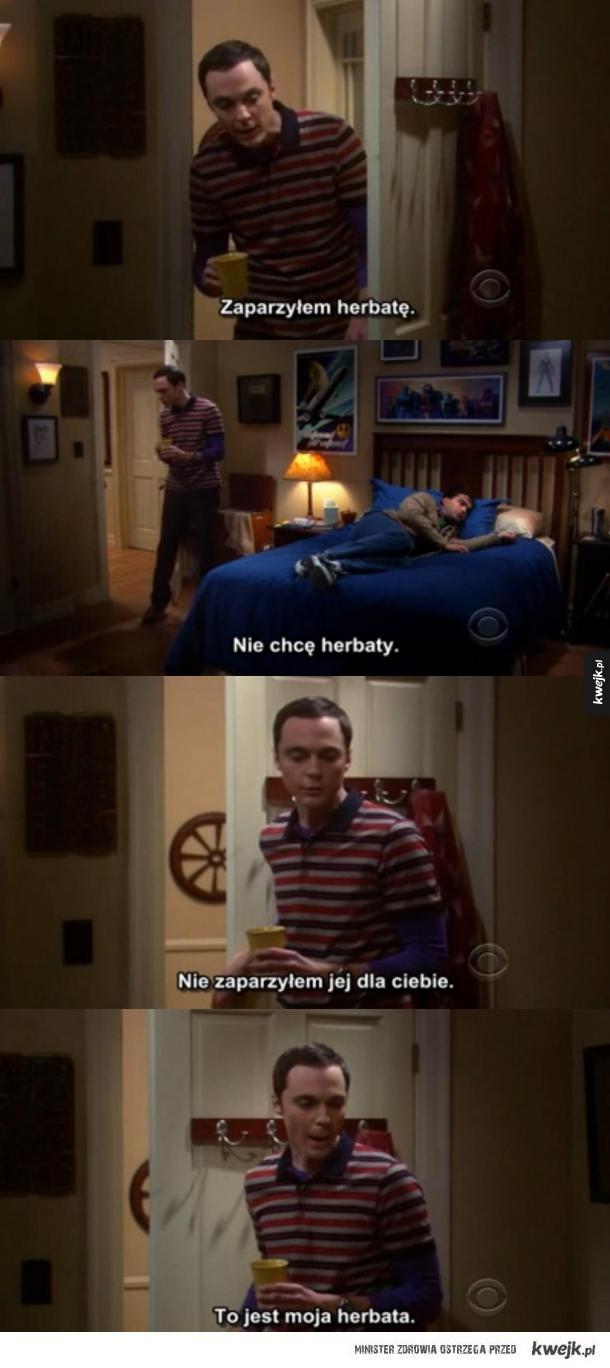 Typowy Sheldon