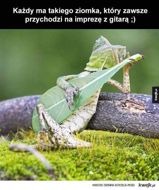 Ziomek z gitaro byłby dla mnie paro