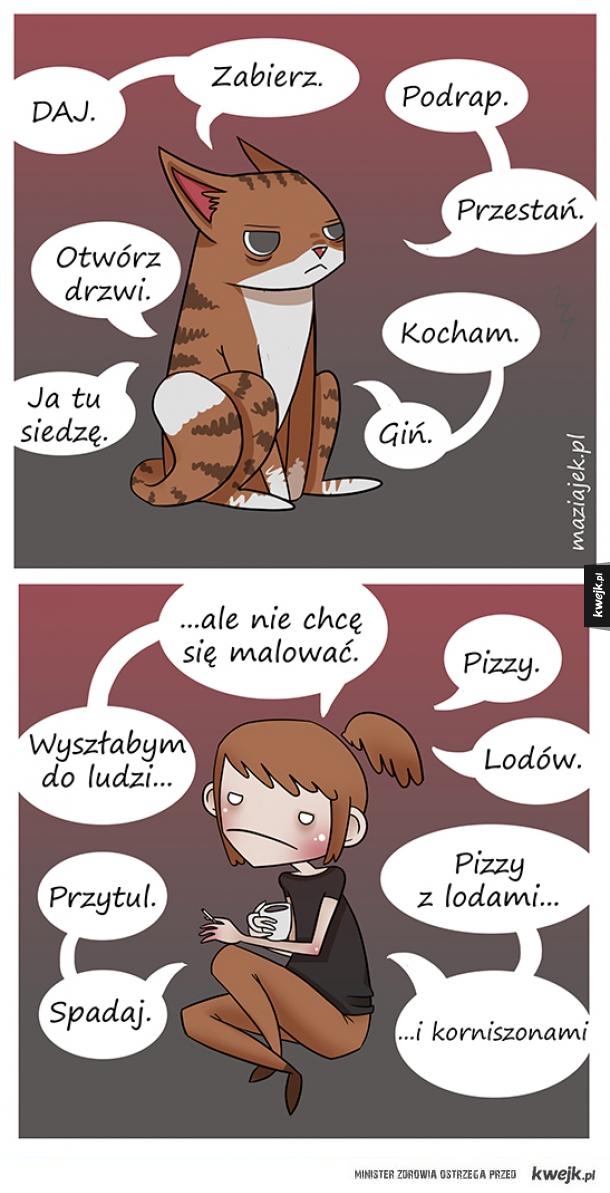 dlaczego baby lubią koty