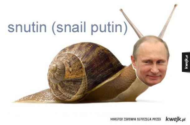 Zakazane w Rosji