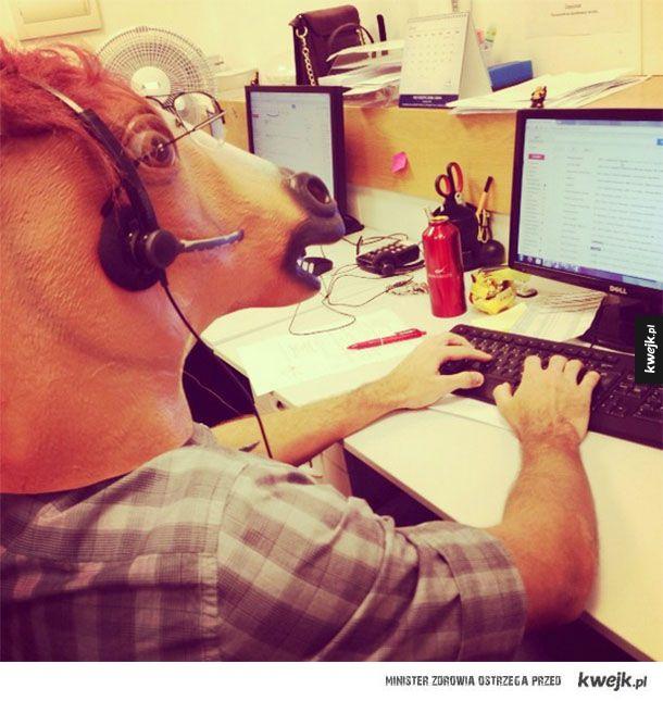 Ludzkie życie koni - Odrzućmy stereotypy, one są takie jak my!
