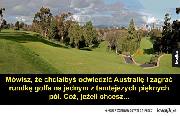 Przewodnik po Australii - Mówisz, że chciałbyś odwiedzić Australię i zagrać rundkę golfa na jednym z tamtejszych pięknych pól. Cóż, jeżeli chcesz...