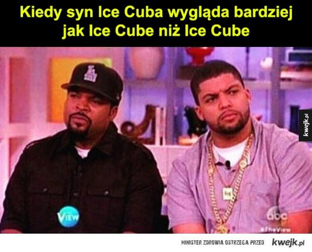 jaki syn taki ice cube