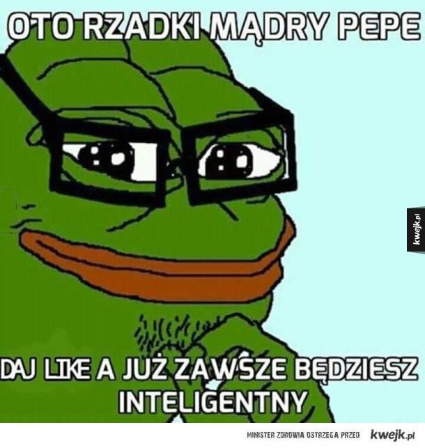Mądry Pepe na szczęscie!