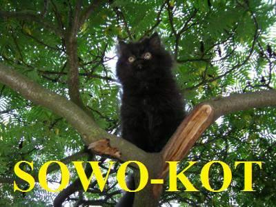 SOWOKOT
