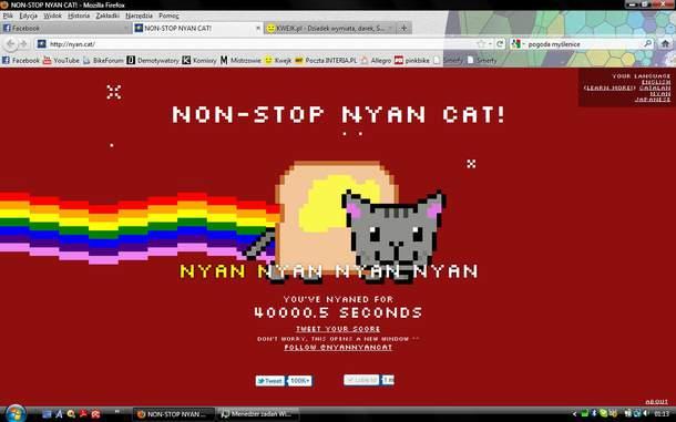 My Nyan Cat Record