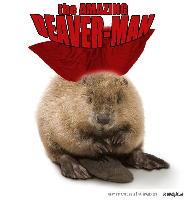 Beaver Man