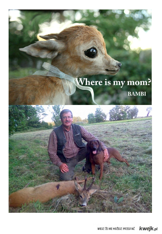 Bambi, don't worry