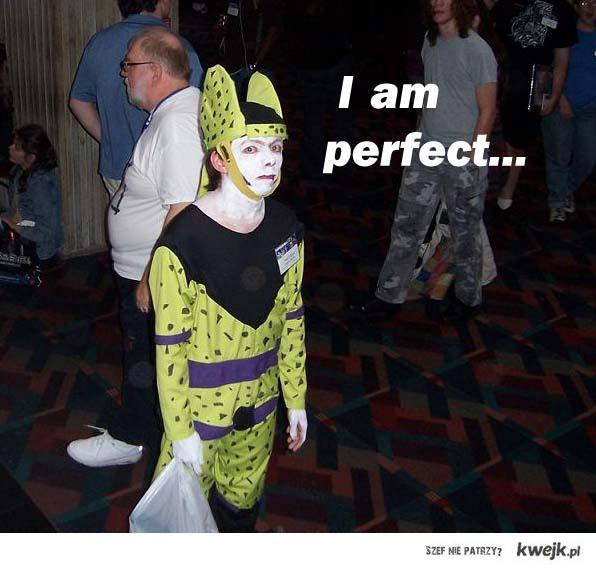 I am perfect