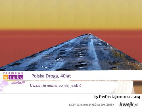 polskie_drogi
