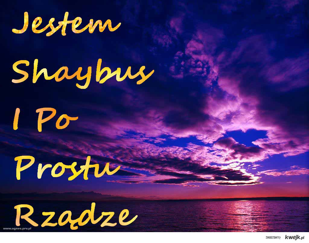 Shaybus