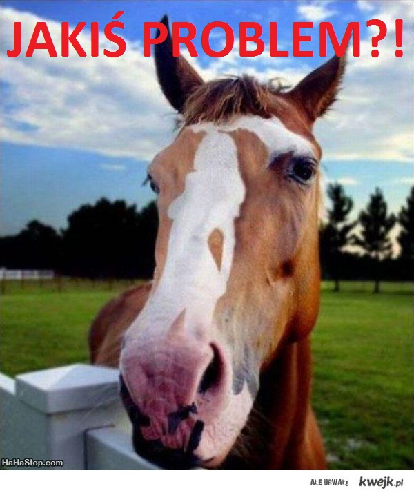 Jakiś problem???