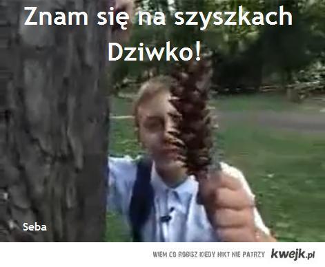 SebastianzeSzczecina