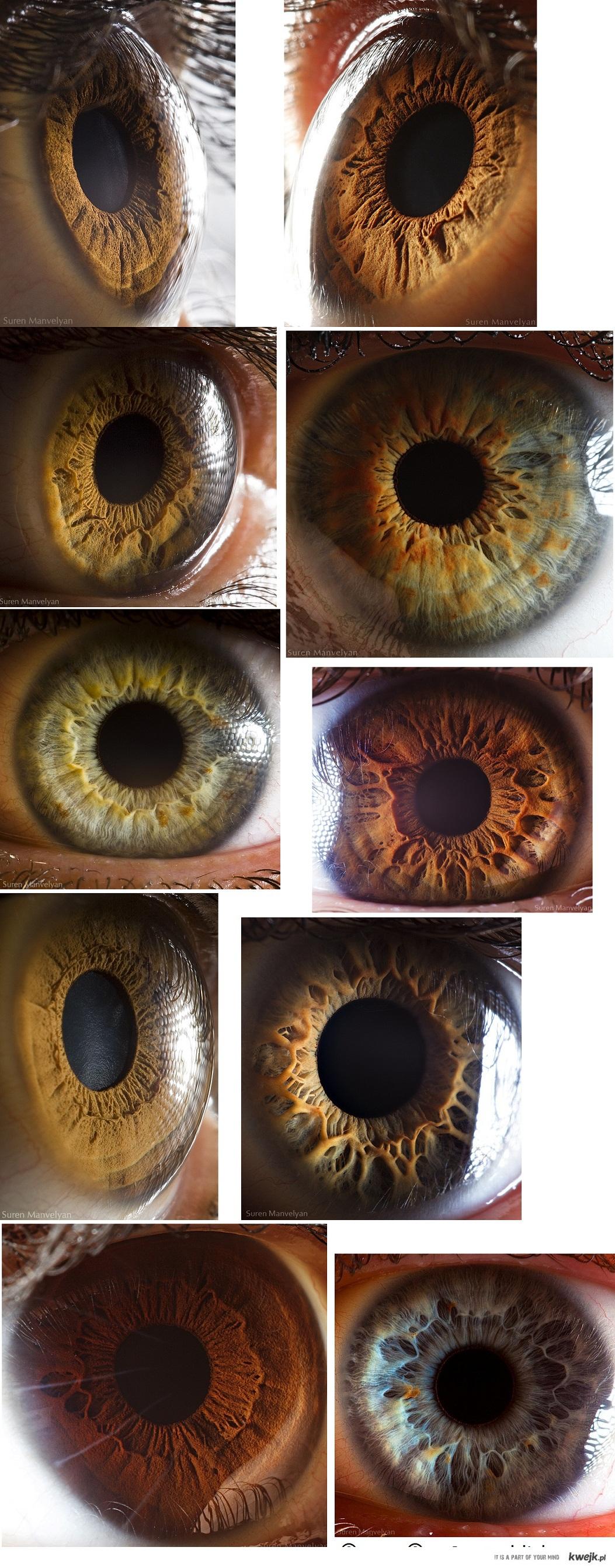 Piękne oczy z Bliska