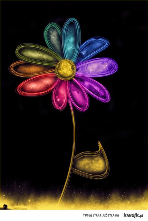 spóźniony kwiatek dla wszystkich mam!