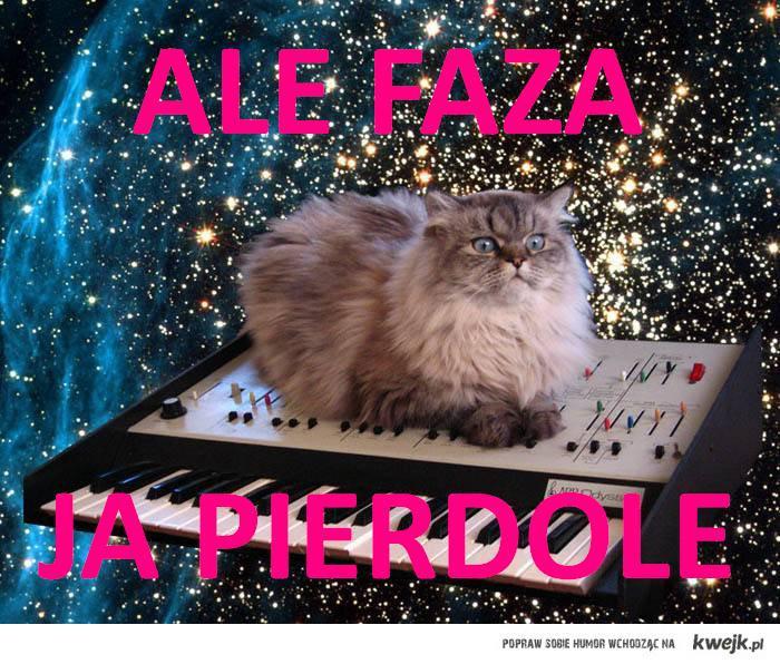 ALE FAZA