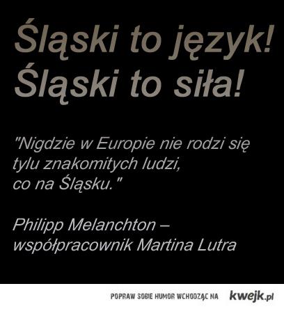 Śląski to język! Śląski to siła!