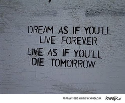 dream and live