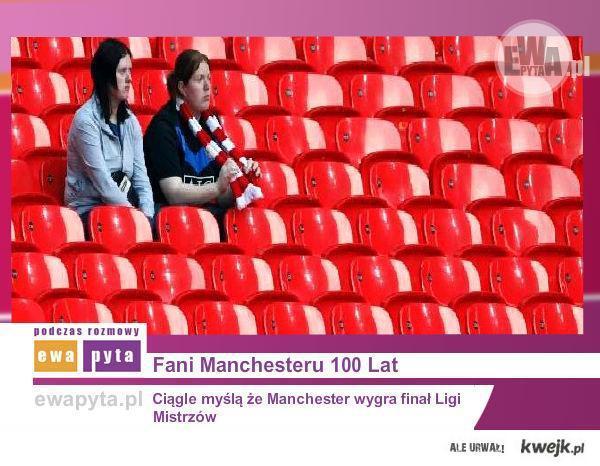 Fani Manchesteru
