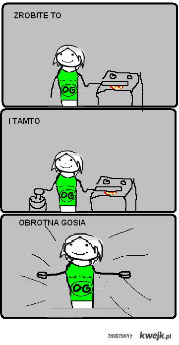 OBROTNA_GOSIA