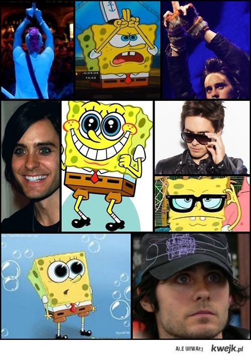 Spongebob i Jared
