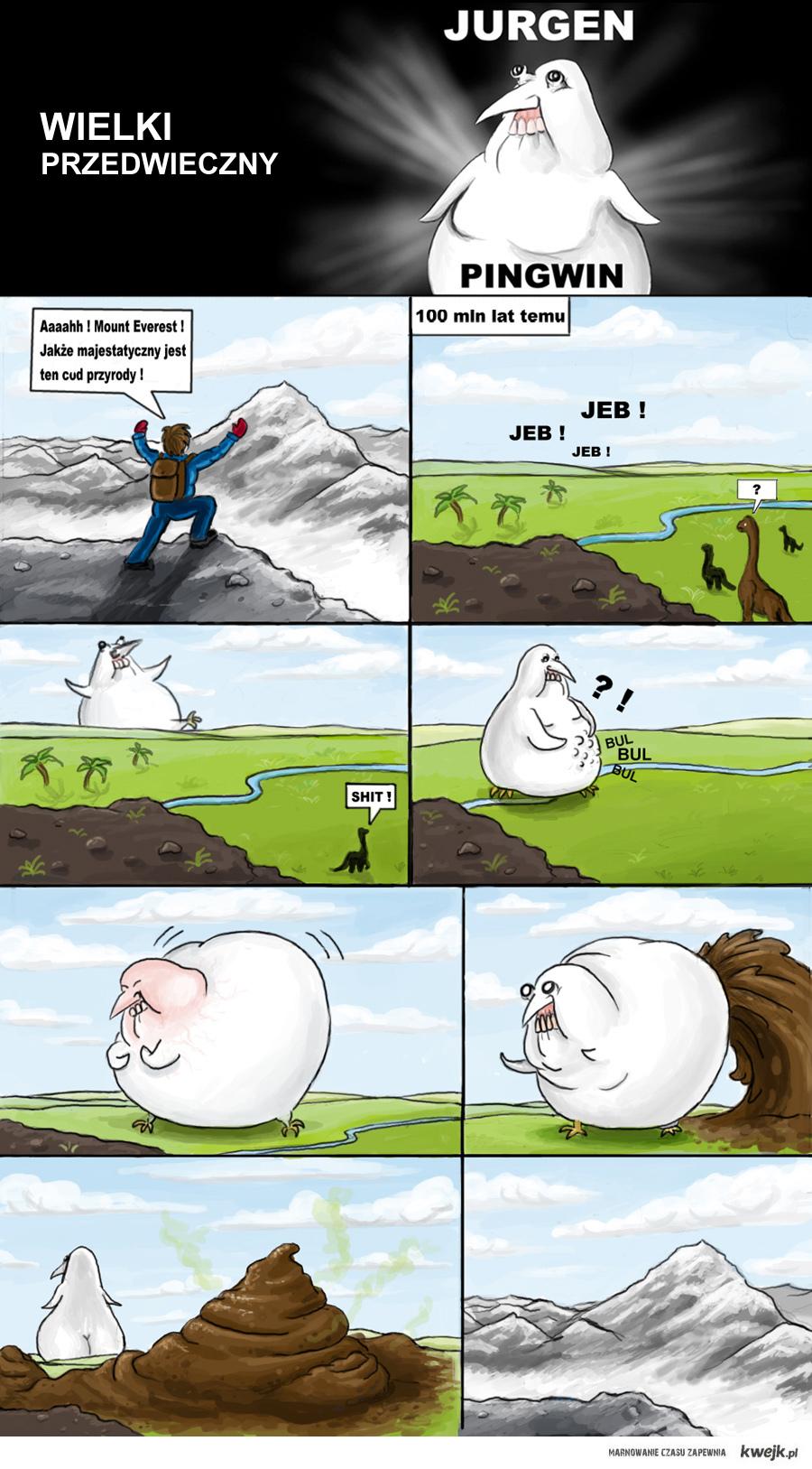 jurgen pingwin - mount everest