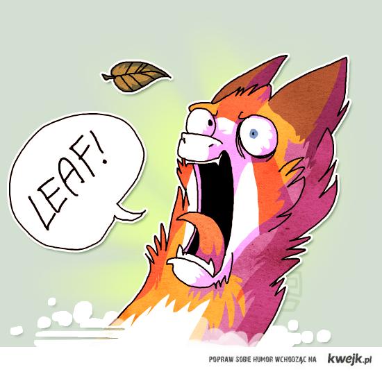 LEAF?!