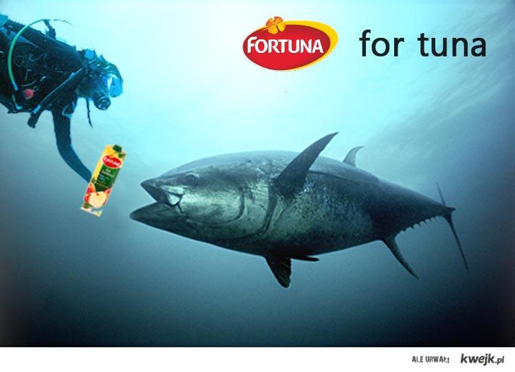 for tuna